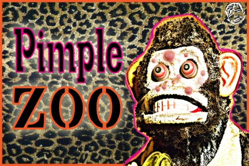 Pimple Zoo